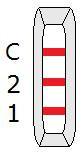 Pozytywny wynik testu na przeciwciała IgG/IgM COVID-19