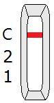 Negatywny wynik testu na przeciwciała COVID-19